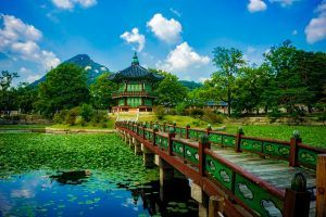 2019 great Korea adventure discovery