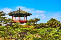 Top TEFL job South Korea now open
